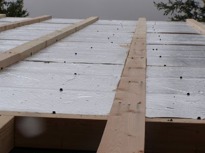 Insulated Roof Panels Ventilated Roof by RAYCORE SIPs - Palmer Cabin