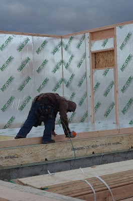 Structural Insulated Panels Framing RAYCORE SIPs