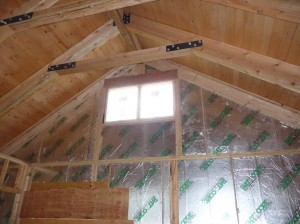 Vaulted Ceiling Insulation Ray Core