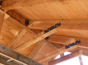 Vaulted Ceiling Insulation on designer ceilings for homes